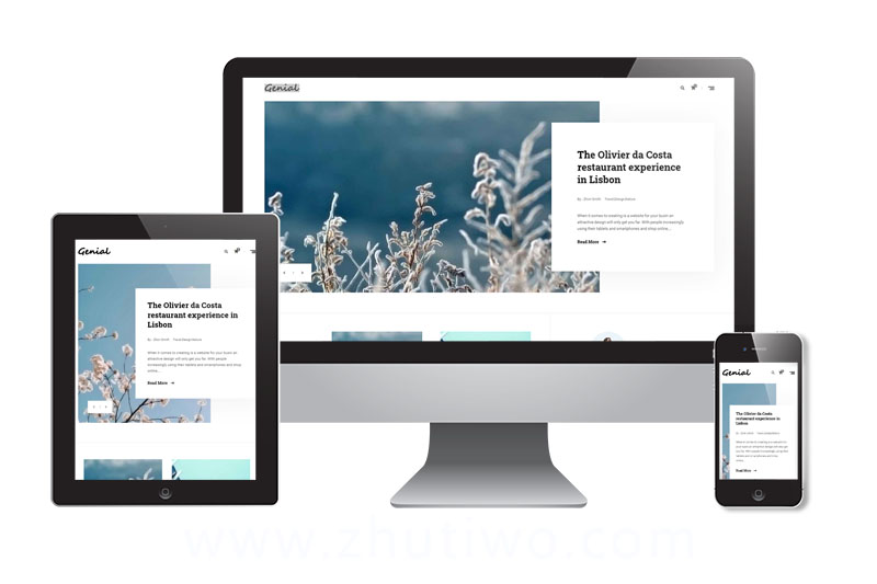 图文博客网站模板 响应式多端风格模版下载