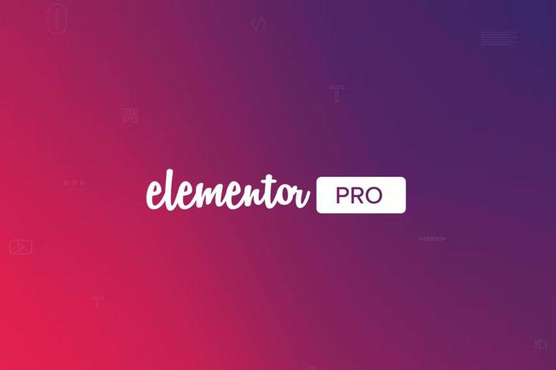 Elementor Pro v3.4.2汉化已激活版 + Elementor v3.4.5免费版