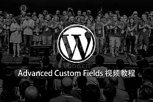 Advanced Custom Fields插件详细使用视频教程