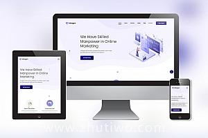 网络推广公司网站模板 网络优化SEO公司网站模版