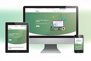 网络营销SEO业务网站模版 网络推广网站模版