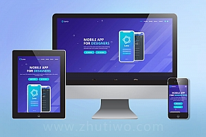 APP软件开发公司网站模板 软件公司网站模板